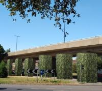 Southampton viaduct to get 'living' piers image