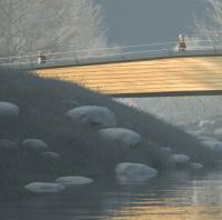 Winner chosen in German footbridge design contest image