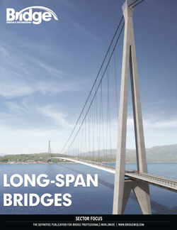 Long span bridges