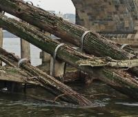 Work begins on Charles Bridge pier protection logo